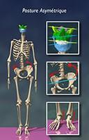 Posture équilibrée